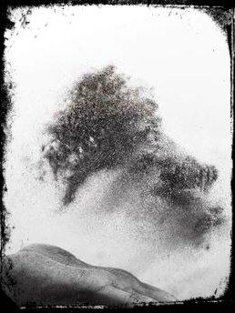 sonhar com poeira