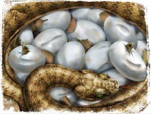 Significados de Sonhar com Ninho de Cobra