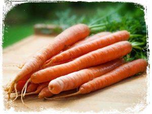 o que quer dizer sonhar com cenoura