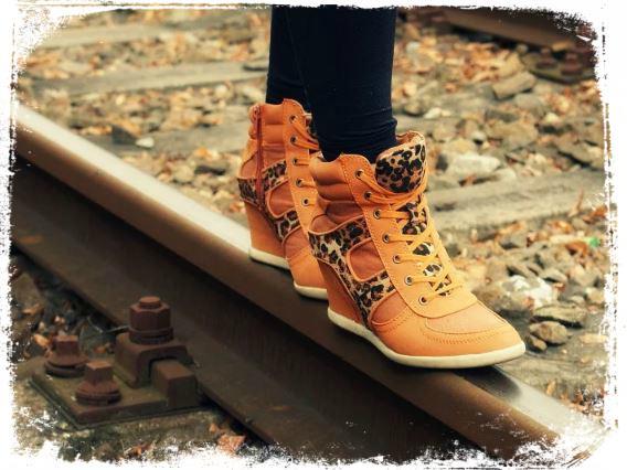sonhei andando em cima do trilho o que significa Sonhar com Trilho de Trem