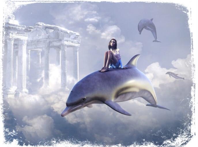 significado de sonhar com golfinho