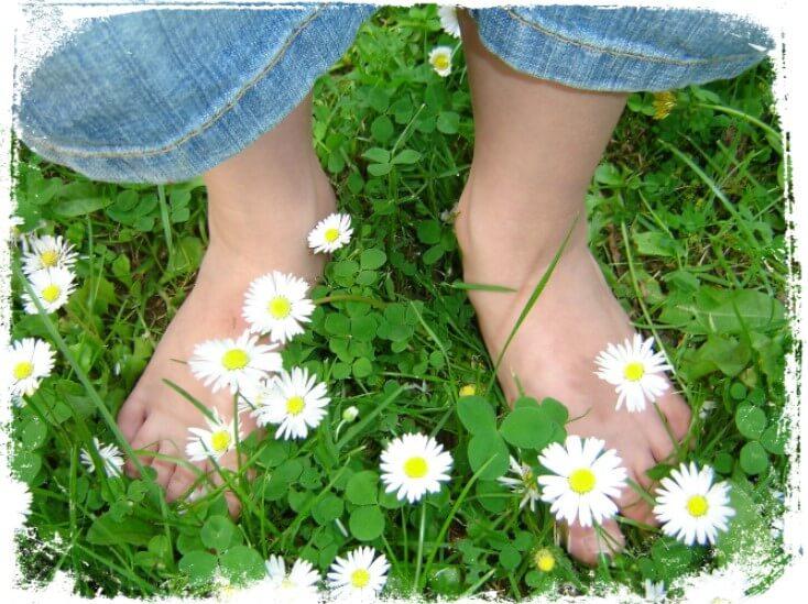 Sonhar que esta descalço na grama