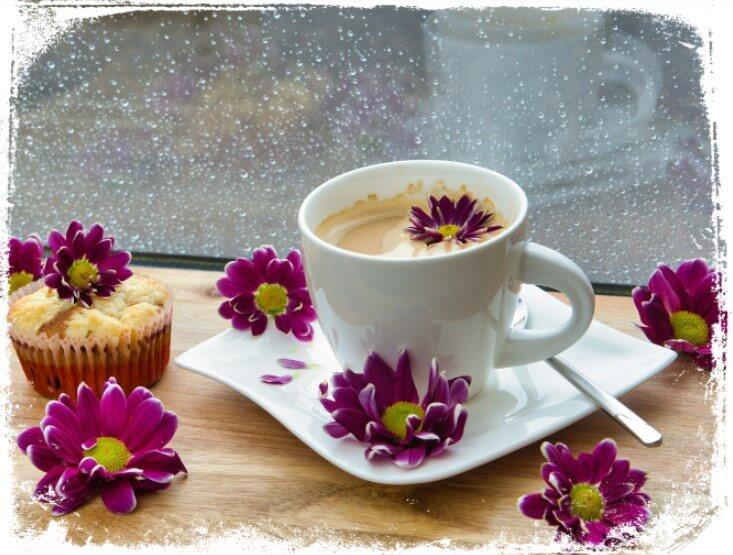 Sonhar com xícara branca