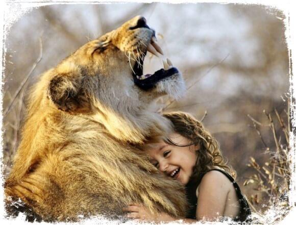 Sonhar acariciando ou consolando um animal