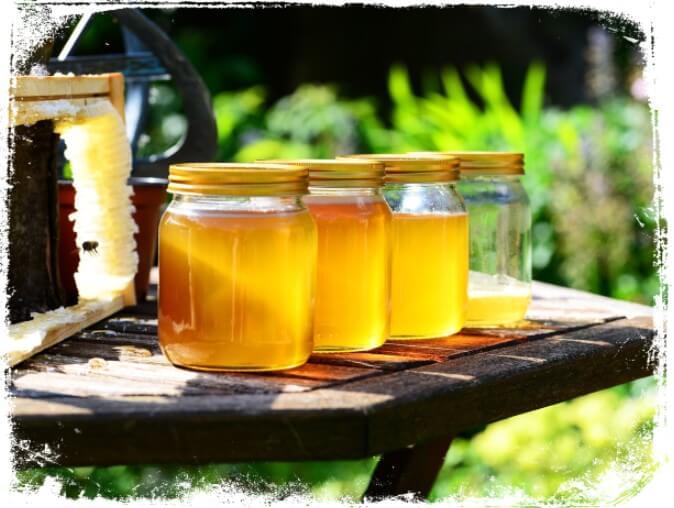 Sonhar com muito mel