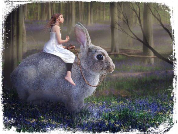 Sonhar com um animal ajudando você de alguma forma