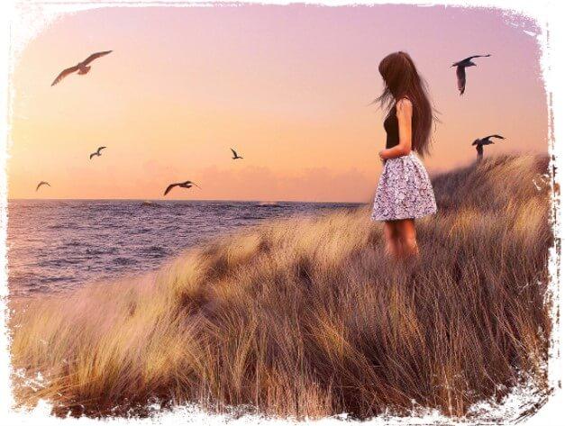 Sonhar vendo pássaros