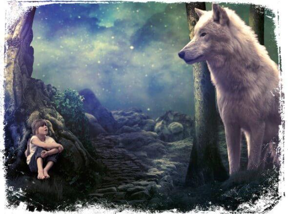 Sonhar vendo um animal