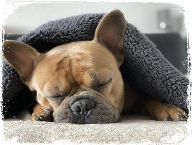 sonhei com um cobertor