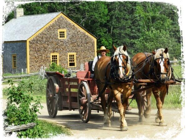 O que é sonhar com cavalo e carroça?