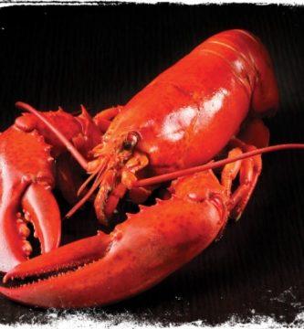 O que é sonhar com lagosta?