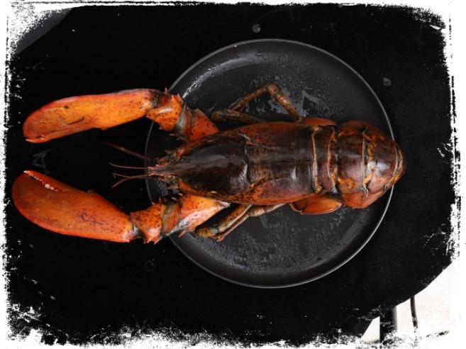 Sonhar com lagosta cozida