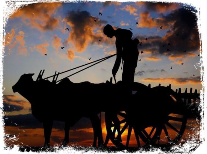 O que significa sonhar com boi puxando carroça?