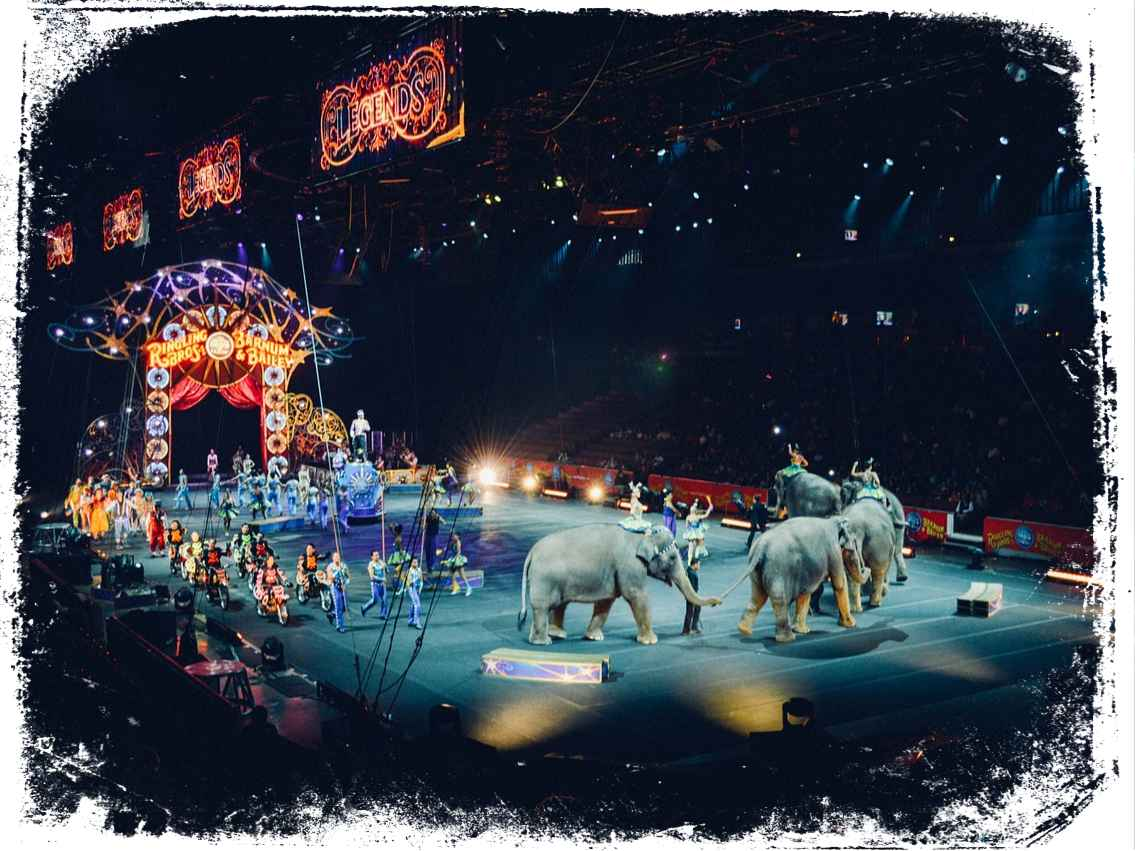 O que significa sonhar com circo?