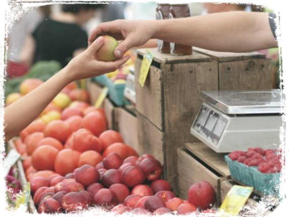 O que significa comprar comida em sonho