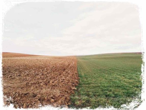 O que significa ver terreno vazio em sonho