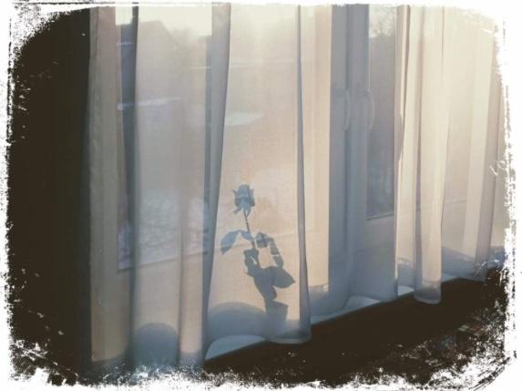 Qual o significado de sonhar com cortina escondendo a luz do dia