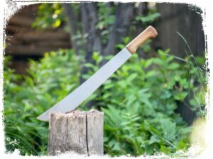 O que significado sonhar que vê um facão