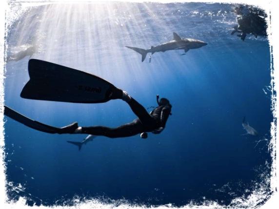 Qual o significado de mergulhar em águas claras em sonho