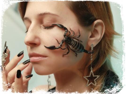 Sonhar com escorpião preto